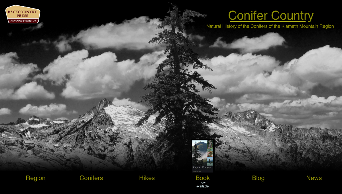 Conifer Country